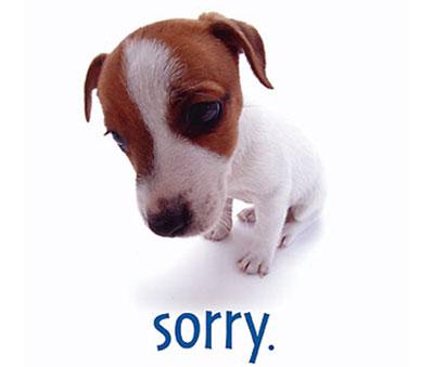 Как просить прощение у любимого парня