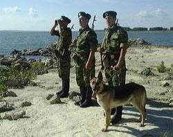 http://www.inmoment.ru/img/day-frontier-guard.jpg