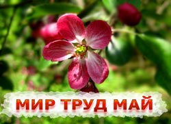 Праздник 1 мая праздник весны и труда