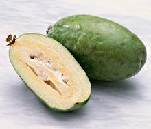 Фейхуахуа фрукт фото