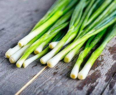 сонник зеленый сушеный лук