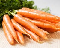 морковь от паразитов