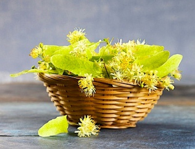 цветки липы от холестерина отзывы