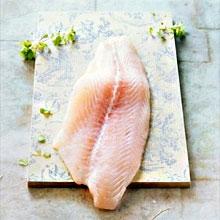 есть ли морской толстолобик