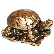 Талисман фен-шуй – черепаха