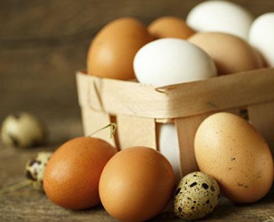 Всемирный день яйца 2019